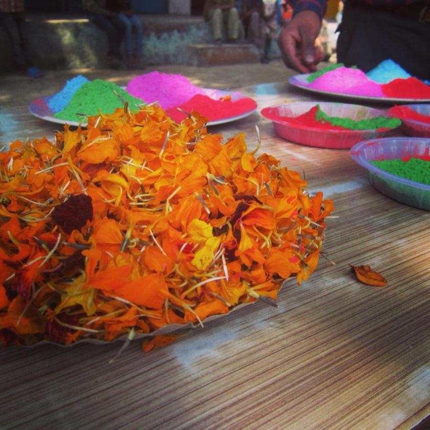 Powdered colours and marigold petals for playing Holi.